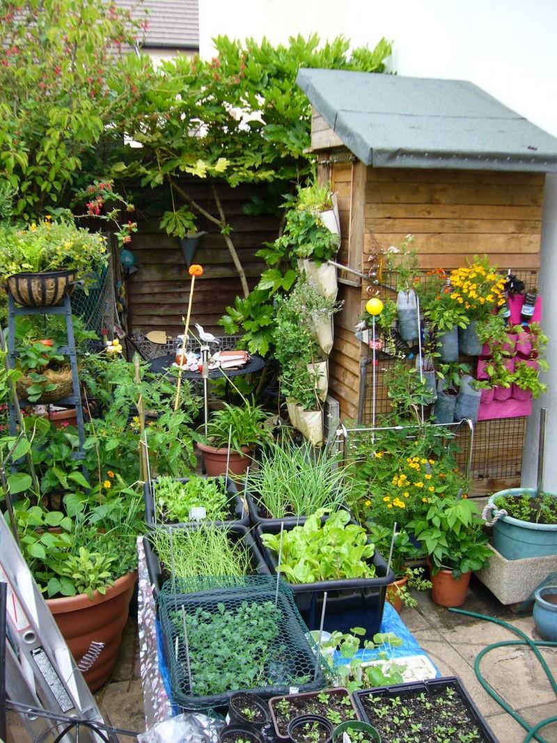 Diy Vertical Vegetable Garden