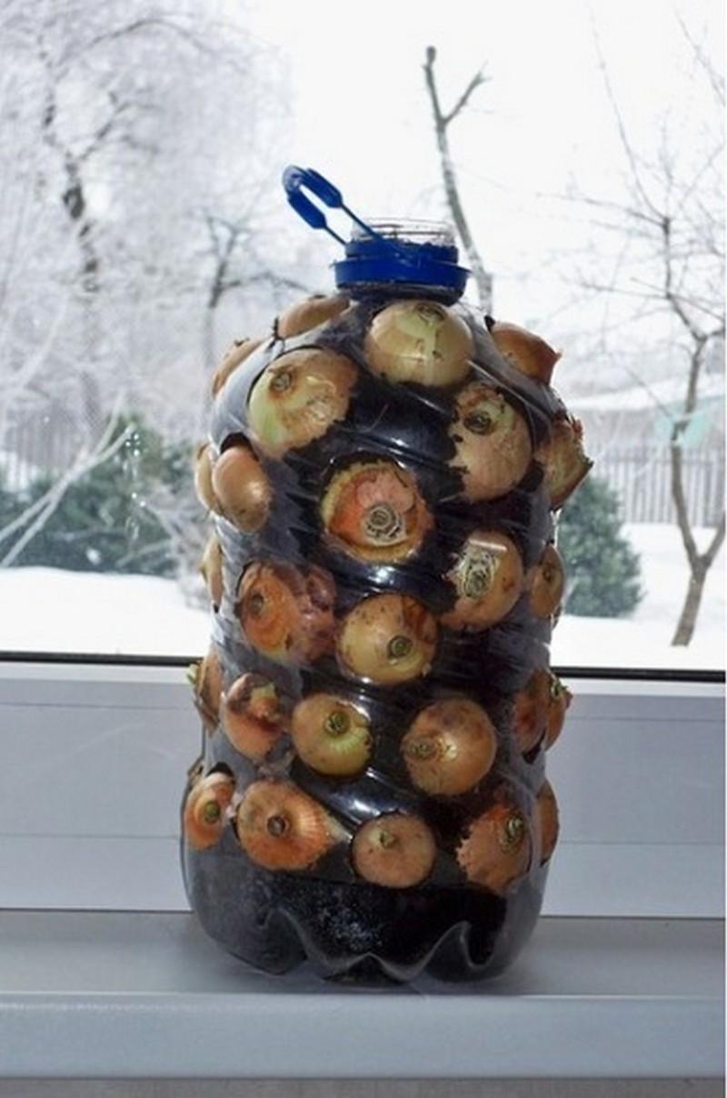 Diy Vertical Onion Planter The Owner Builder Network