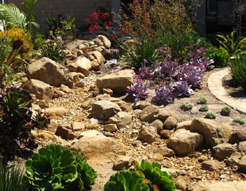 Here S Another Dry Creek Garden Planted With Succulents