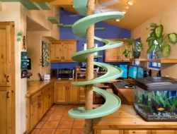 A green oasis for cats - for climbing up or sliding down?