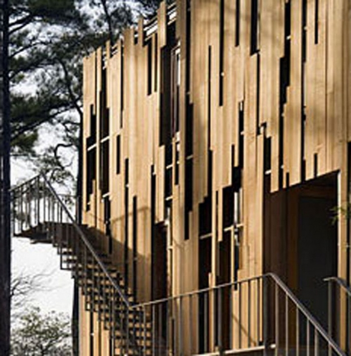 A House Among And Within The Loblolly Pines The Owner