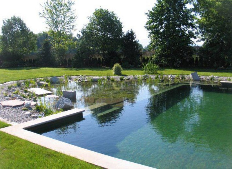 Pond on pinterest natural swimming ponds natural swimming pools and water garden Natural swimming pool builders