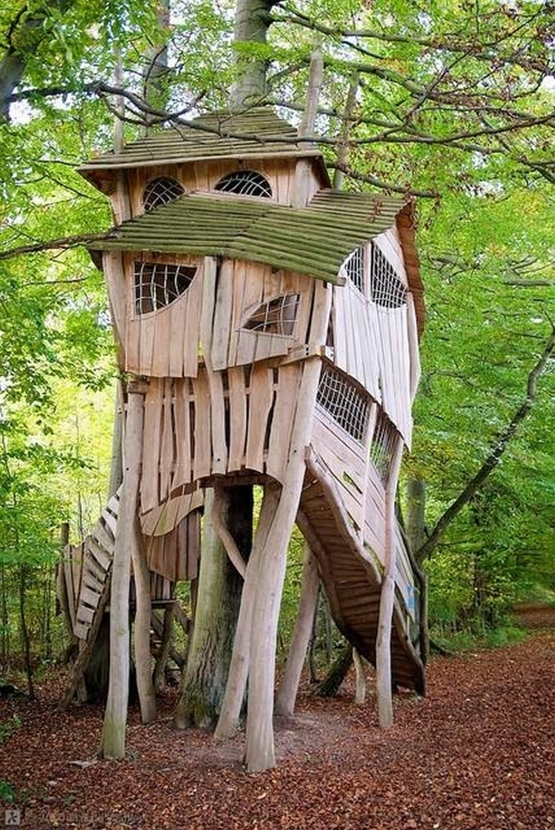 Now That S How To Enjoy The High Life Luxury Tree Houses For 250 000 Treehouse And Swiss Family Robinson