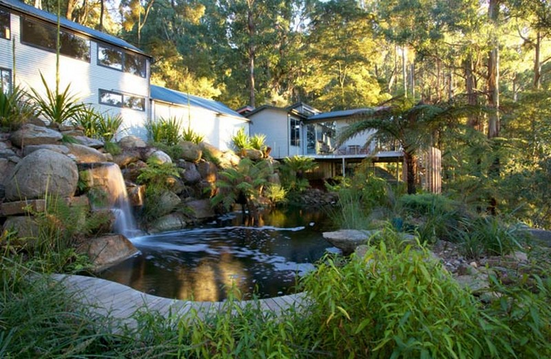 Natural swimming ponds the owner builder network for Natural swimming pool australia