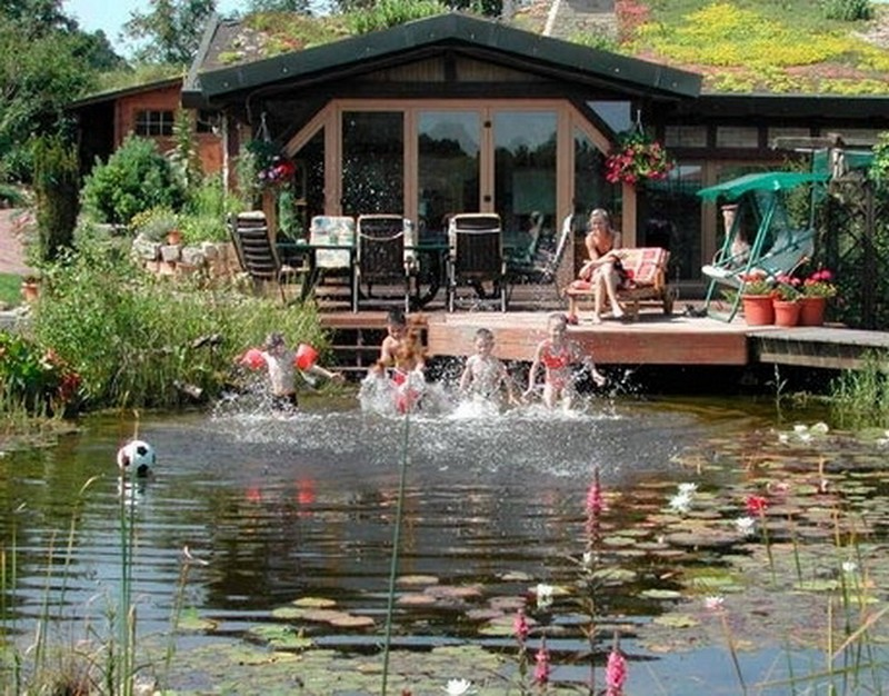 natural swimming ponds the owner builder network