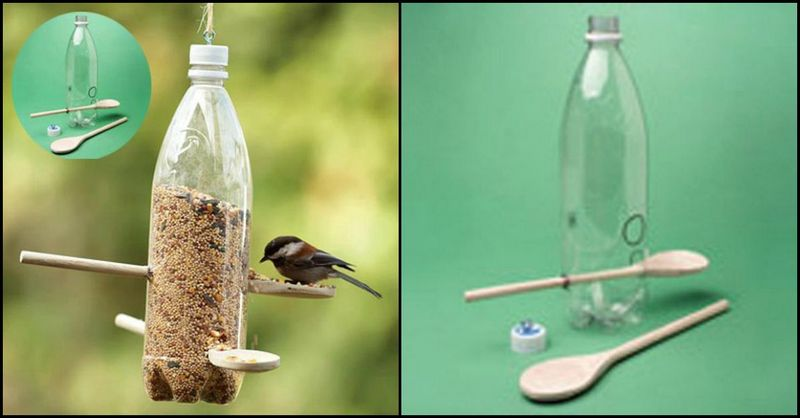 PET Bottle Bird Feeder
