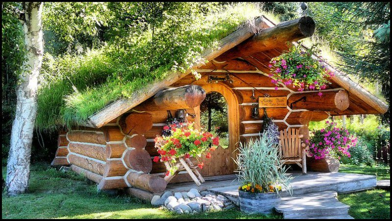 Cozy rustic cabins for Rustic hunting cabins