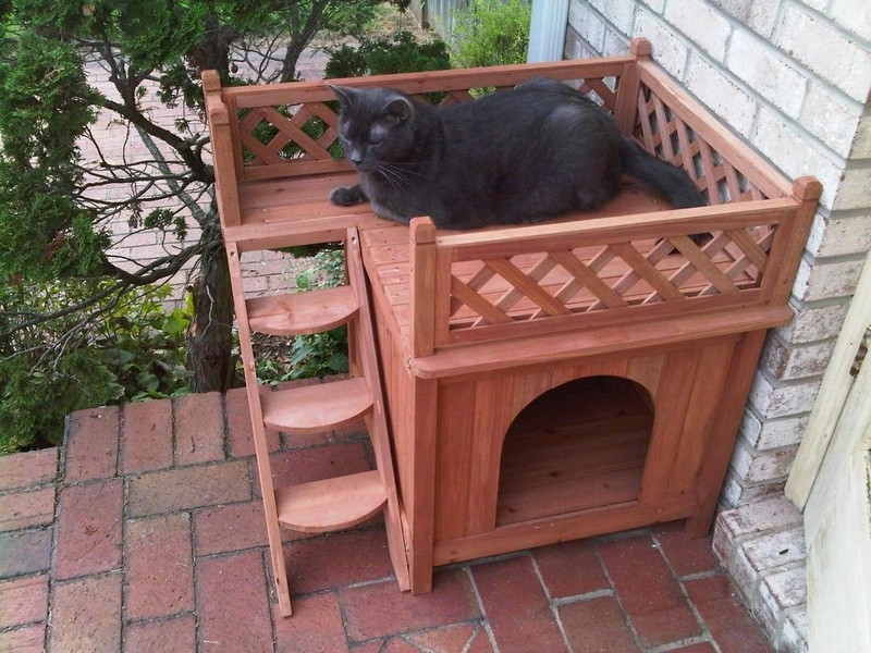 dog_house_with_viewing_deck5 Wooden Cat House Design on product cat houses, vinyl cat houses, box cat houses, indoor cat houses, bamboo cat houses, fancy cat houses, toy cat houses, wall cat houses, wire cat houses, insulated feral cat houses, elegant cat houses, antique cat houses, amazing outdoor cat houses, cold weather cat houses, house cat houses, wooden littlest pet shop house, pvc cat houses, neat cat houses, blue cat houses,