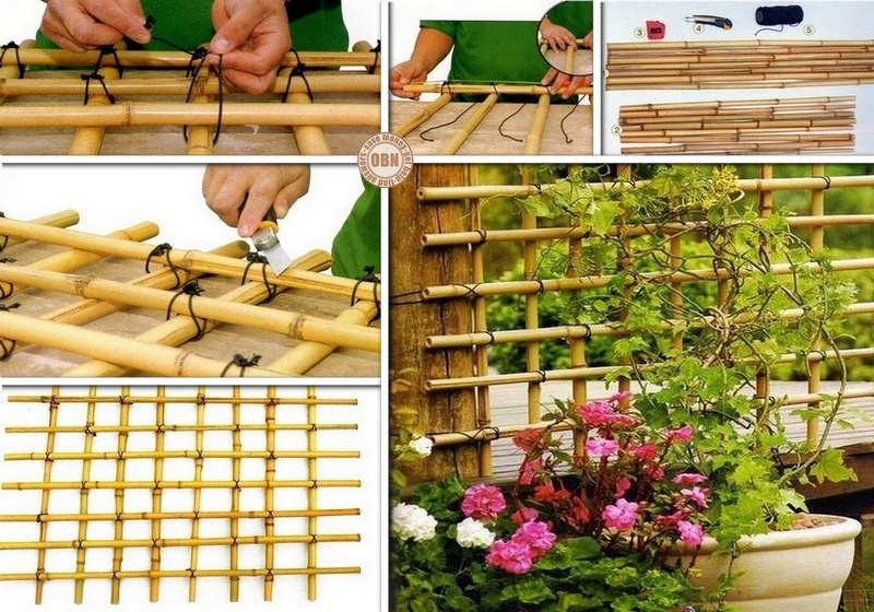 Diy bamboo trellis the owner builder network for Making bamboo things