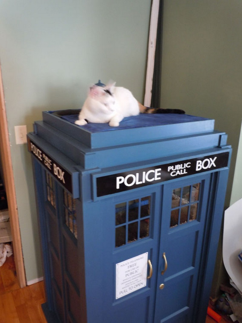 Tardis Cat House Instructions