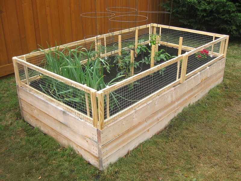 DIY Screened Raised Garden Bed The Owner Builder Network