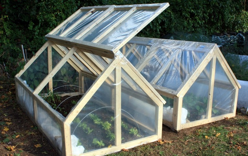 Build Small Greenhouse Diy Greenhouse Diy Mini Greenhouse