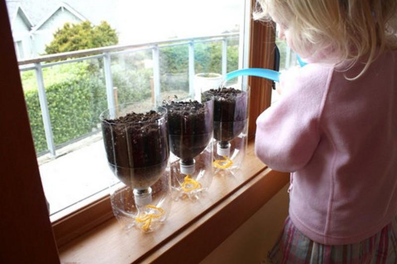 diy selfwatering seed starter pots the ownerbuilder