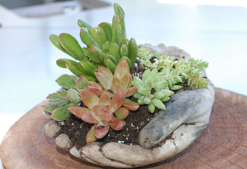 how to make large hypertufa hands planters