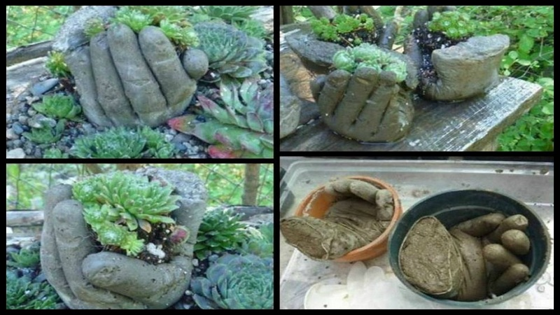 Gardening Ideas The Owner Builder Network