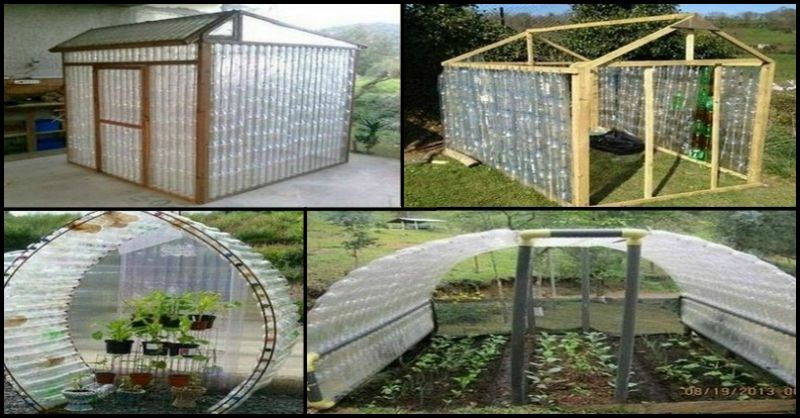 Repurposed plastic bottle greenhouses for Supplies to build a house