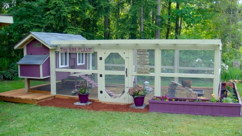 DIY Trampoline Chicken Coop | The Owner-Builder Network