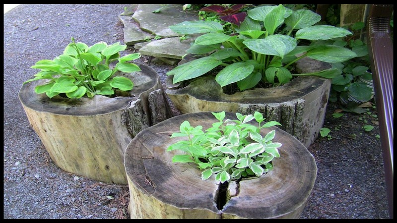 Beautiful diy garden paths and inspiration the owner for Upcycled tree stumps
