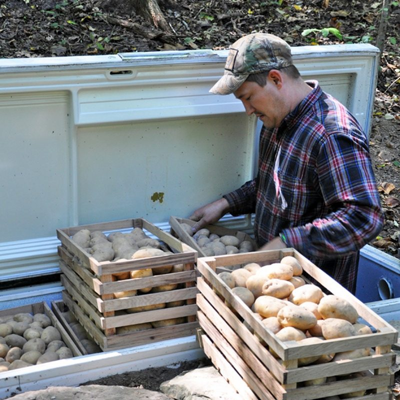 Root Cellar Ideas The Owner Builder Network
