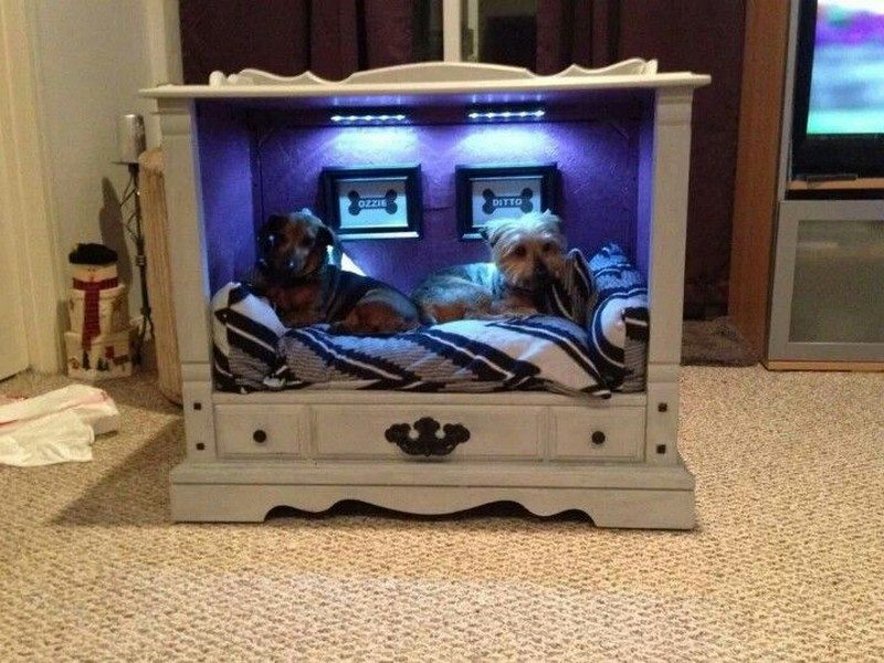 Fabulous Dog Bed Design Ideas Your Pets Will Enjoy | The Owner-Builder ...