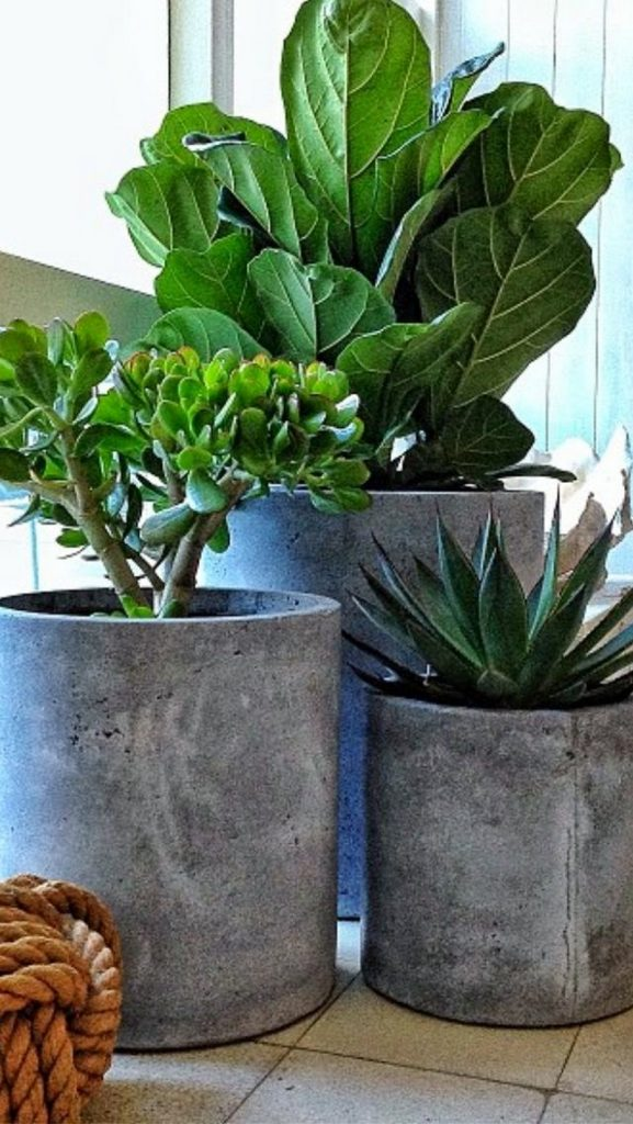 Concrete Pots For Plants : How to make your own concrete planter the owner builder