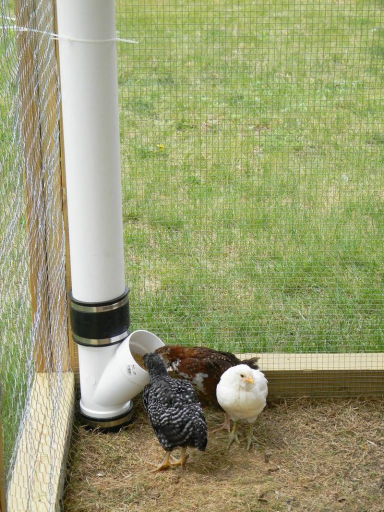 How To Build An Inexpensive Chicken Feeder From Pvc The