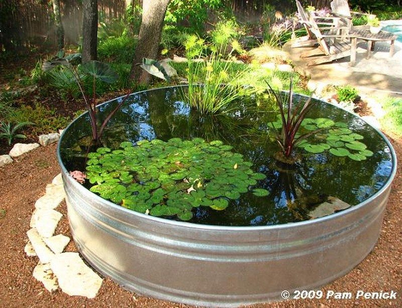 Awesome aquarium and fish pond ideas for your backyard for Diy backyard pond