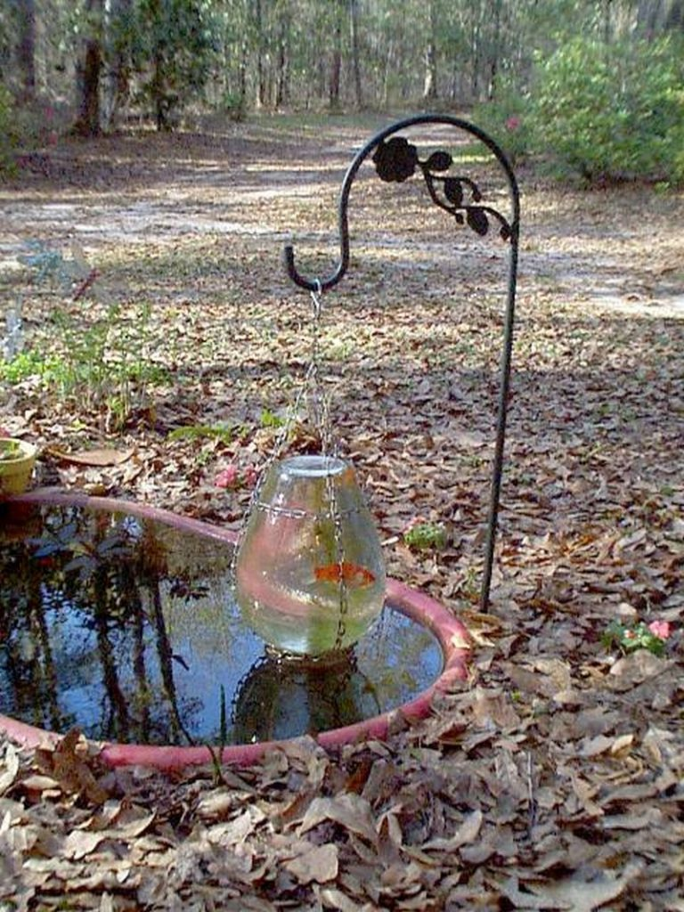 Awesome Aquarium And Fish Pond Ideas For Your Backyard The Owner Builder Network