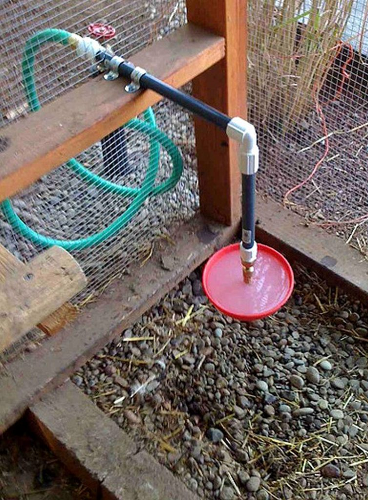 Chicken Water Station Ideas The Owner Builder Network