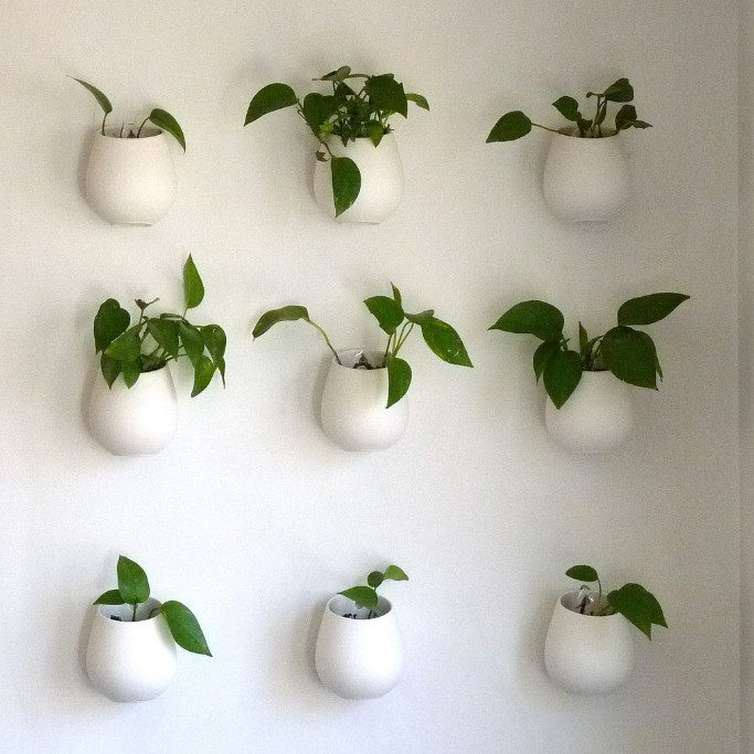 An instant vertical garden for your courtyard or deck area (image source: normanack, Flickr)