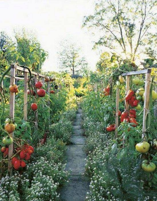 We love garden paths! Here's one where you can snack as you walk...