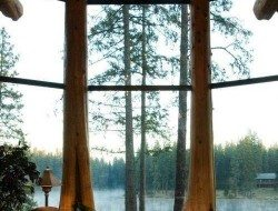 Here's a lovely example of whole tree architecture, although that view probably does help!