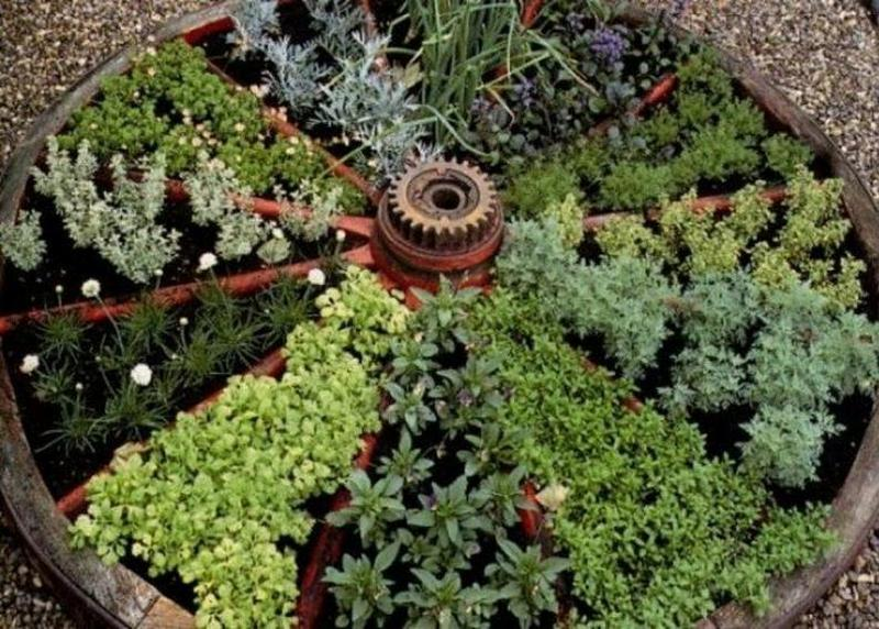 I don't personally have a wagon wheel lying around, but for an idea for growing herbs, this is pretty good.