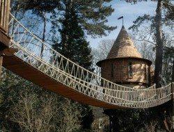 Fairytale treehouse Bridge