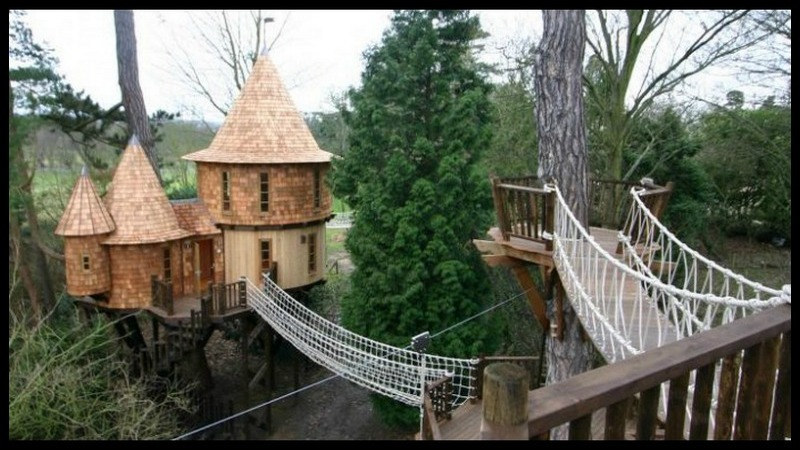 What child – or adult – wouldn't love this in their backyard?