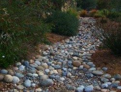 "A dry creek bed complete with Australian natives. This is almost ""no maintenance"" gardening."