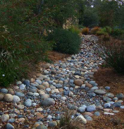 """A dry creek bed complete with Australian natives. This is almost """"no maintenance"""" gardening."""