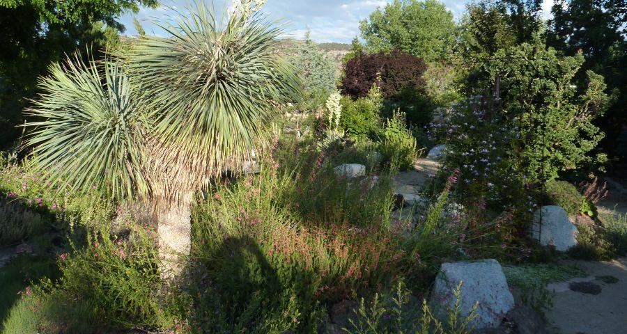 Dry Creek Garden Company