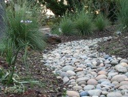 Dry creek bed garden California