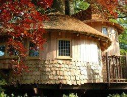 Fairytale treehouse Exterior
