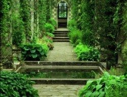 What an absolutely divine garden path.