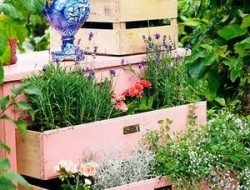 Here's another cute idea for recycling in your garden.
