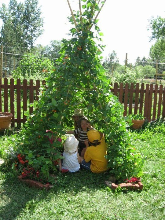 If your kids hound you to death about building a cubby, why not build this edible teepee.
