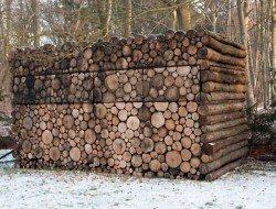 Log Cabin on Wheels - Windows Closed