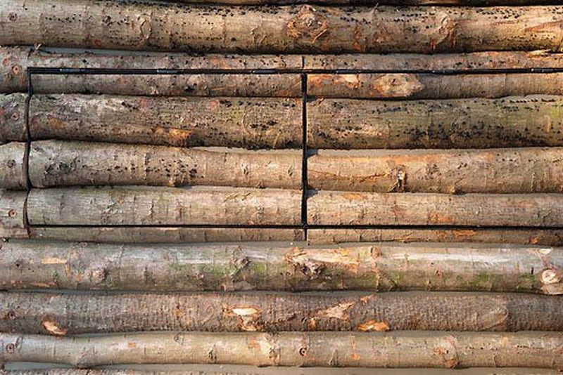 Log Cabin on Wheels - Log Cladding