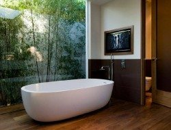 Indoor-outdoor bathroom design - location unknown