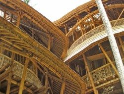 Bamboo builds magnificent multi-story structures