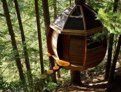 The Hemloft has been built around a hemlock tree on crown land.