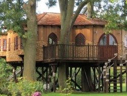 Treehouse office Front View