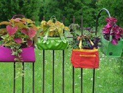 When it comes to gardening ideas is this a WIN or a FAIL?